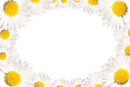 Floral frame made of common daisy flowers photo