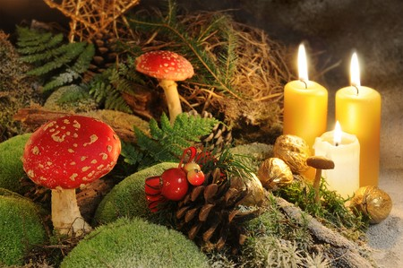 Christmas still life - scene with candles, decorative cone and mushrooms. photo