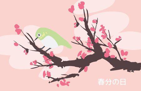 Spring Vernal Equinox day celebration card template. Cherry blossom sakura and japanese white eye bird. Vector illustration. Caption translation: Vernal Equinox Day  イラスト・ベクター素材