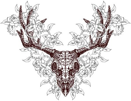 Realistic detailed hand drawn illustration of an old animal deer skull with big horns and roses background. Graphic tattoo style art on occult theme. Design for t-shirt print.