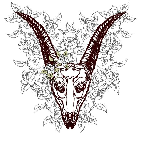 Realistic detailed hand drawn illustration of an old animal goat skull with big horns and roses background. Graphic tattoo style image on occult theme. Design for t-shirt print. 일러스트