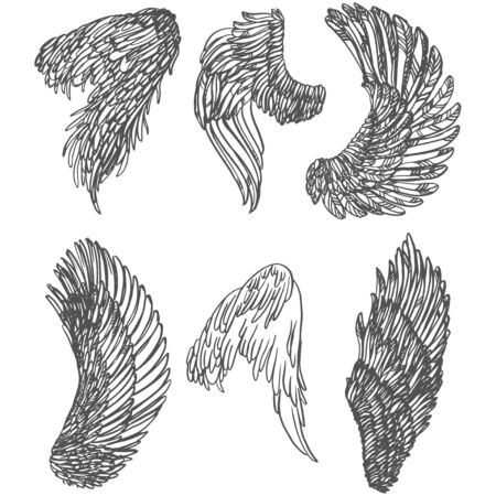 Realistic detailed hand drawn illustration of wings set. Graphic tattoo style image. Design element for t-shirt print.