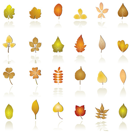 leaf icon Stock Vector - 4996569