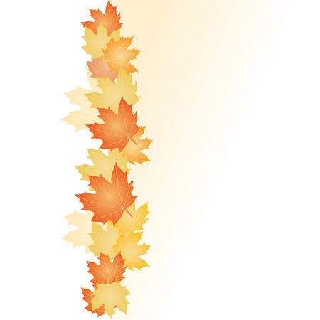 fall of leafs: Abstract backgrounds with fall Leafs