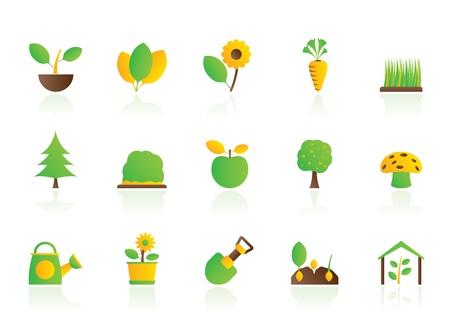 siembra: Las diferentes plantas y la jardiner�a iconos - conjunto de vectores icono Vectores