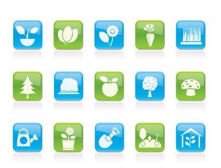 soils: Piante diverse e icone giardinaggio - set di icone vettore Vettoriali