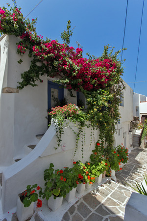 cyclades: House with flowers in Naxos island Cyclades