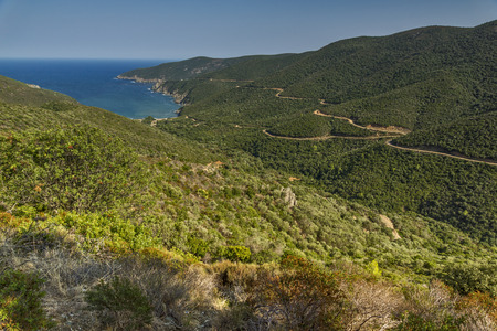 sithonia: Mamba Beach Ampelos Chalkidiki  Sithonia Central Macedonia Greece