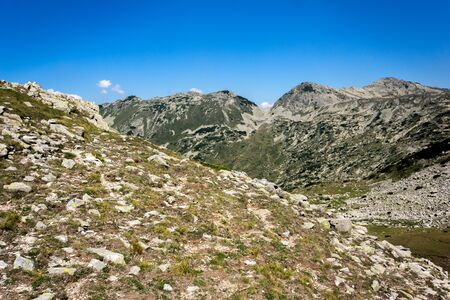 green hills: Landscape of Green hills in Pirin Mountain , Bulgaria
