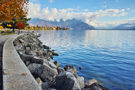 vevey: autumn tree in embankment of town of Vevey and Lake Geneva, canton of Vaud, Switzerland Stock Photo