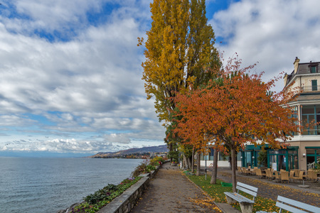montreux: Red tree on embankment in Montreux, canton of Vaud, Switzerland Editorial