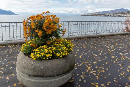 montreux: Flowers on embankment in Montreux, canton of Vaud, Switzerland