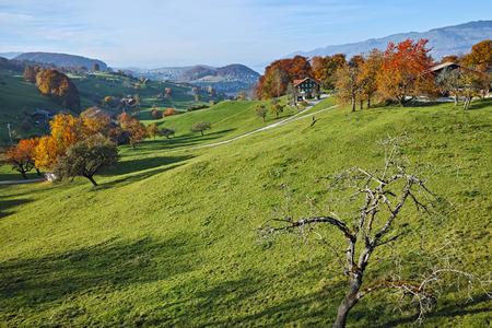 interlaken: green meadows and typical Switzerland village near town of Interlaken, canton of Bern