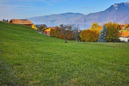 interlaken: Amazing panorama of Lake Thun and typical Switzerland village near town of Interlaken, canton of Bern