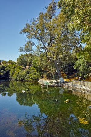 cefalonia: Reflection of trees in Karavomilos lake, Kefalonia, Ionian islands, Greece