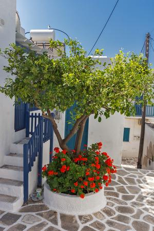 paisaje mediterraneo: casas blancas con flores en la ciudad de Parakia, la isla de Paros, Cícladas, Grecia
