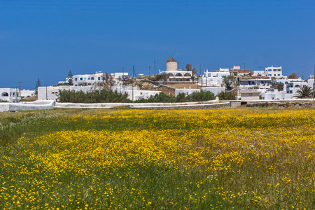 ano: Panoramic view of Town of Ano Mera with spring flowers, island of Mykonos, Cyclades, Greece Stock Photo