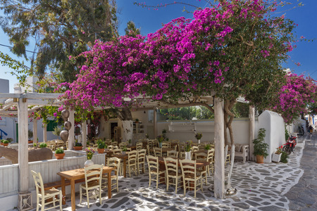 cyclades: Red flowers and typical restaurant, island of Mykonos, Cyclades, Greece