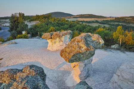 Prodigy: The Stone Mushrooms viewed from above near Beli plast village, Kardzhali Region, Bulgaria