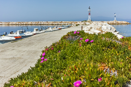 skala: Seascape with Spring flowers and pier in Skala Sotiros, Thassos island, East Macedonia and Thrace, Greece