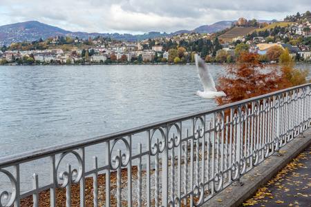 montreux: MONTREUX, SWITZERLAND - 29 OCTOBER 2015 : Embankment of  Montreux and Alps, canton of Vaud, Switzerland