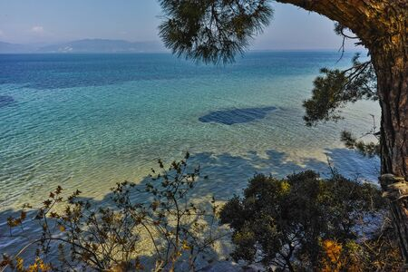 beach with blue waters in Thassos island, East Macedonia and Thrace, Greece