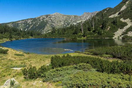 Increíble paisaje con peces Lago Vasilashko, montaña Pirin, Bulgaria