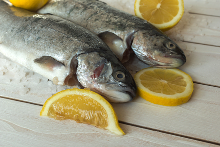 Rainbow trout over sea salt with pieces of lemon over white mediterranean wooden background Imagens