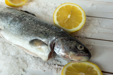 Rainbow trout over sea salt with pieces of lemon over white mediterranean wooden background Banco de Imagens