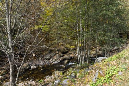 Autumn view of Ecotrail Struilitsa and Devin River gorge, Smolyan Region, Bulgaria