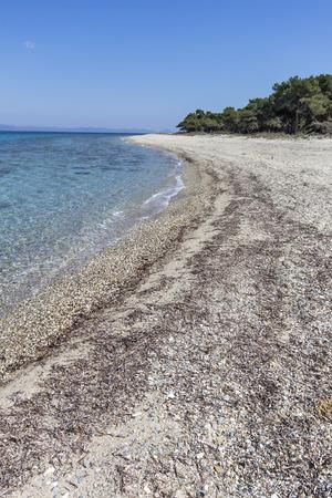 Amazing view of Lagoon Beach at Kassandra Peninsula, Chalkidiki, Central Macedonia, Greece 免版税图像