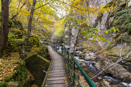 Amazing view of Devin river gorge, Rhodope Mountains, Bulgaria Banco de Imagens