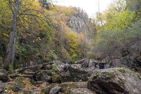 Amazing view of Devin river gorge, Rhodope Mountains, Bulgaria Standard-Bild