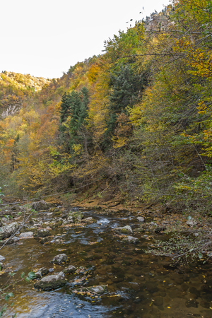 Amazing view of Devin river gorge, Rhodope Mountains, Bulgaria 写真素材