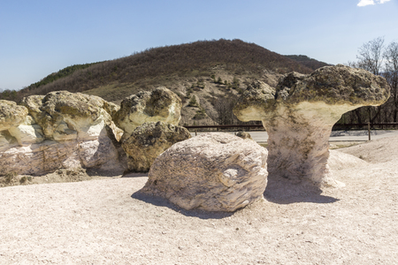 Rock formation The Stone Mushrooms near Beli plast village, Kardzhali Region, Bulgaria 免版税图像