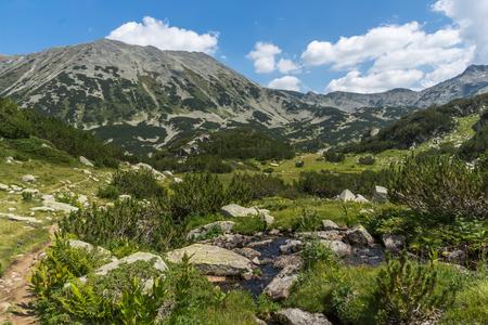 Landscape of Banderishki chukar peak, Pirin Mountain, Bulgaria 免版税图像