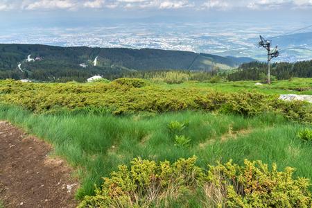 Amazing Summer Landscape of Vitosha Mountain, Sofia City Region, Bulgaria