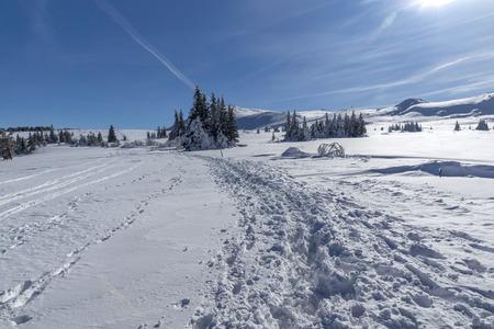 Zimowy krajobraz góry Witosza, region miasta Sofia, Bułgaria