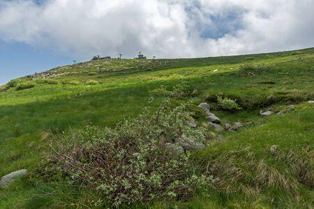 Summer landscape near Cherni Vrah peak at Vitosha Mountain, Sofia City Region, Bulgaria