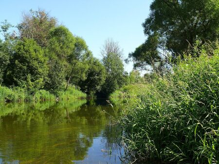Summer landscape with river Stock Photo - 7551265