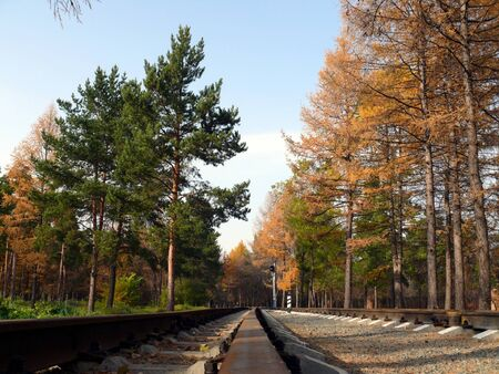 Railroad for kids in Chelyabinsk park Stock Photo