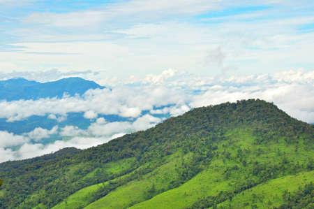 dao: View point of Phu Soi Dao Nationnal Park