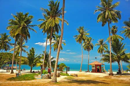 ang: Tropical beach at Ang Thong Island National Park, Thailand Stock Photo