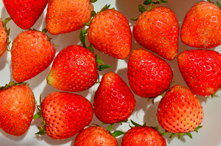 Strawberry of Thailand photo