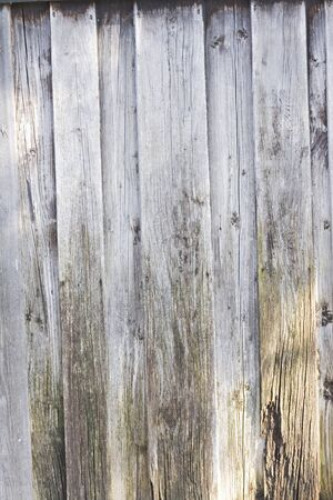 Beautiful old wooden wall as background photo