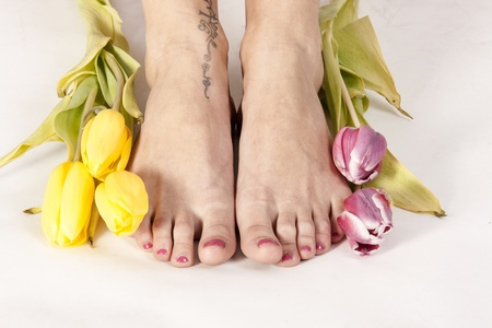 Feet of yellow and pink tulips framed   photo