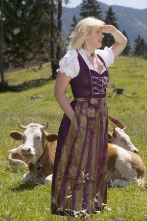 Young woman in a dirndl in an alpine meadow with cows enjoying the view