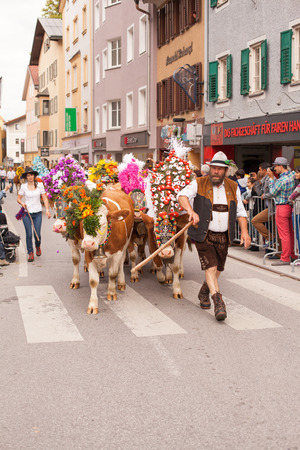 elaborate: Farmer with cows decorated with elaborate floral arrangements at Cattle Drive in Kufstein Austria on 2015-19-09