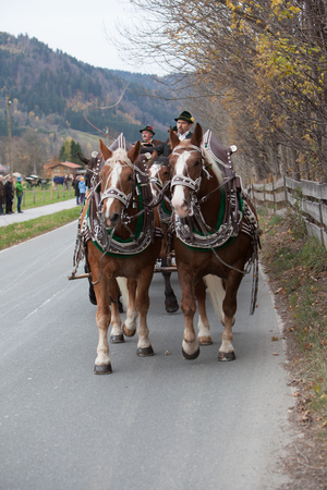 Schliersee, Bavaria - November 5, 2017: Every year on the 1st Sunday in November, the Idyllic Horse procession, named Leonhardi in Bavarian Schliersee takes place in commemoration of Patron St. Leonhard. In traditional clothing and decorated horse-drawn c Editorial