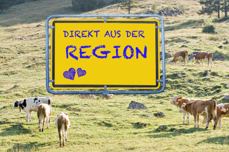 Alpine meadow with cows and the sign